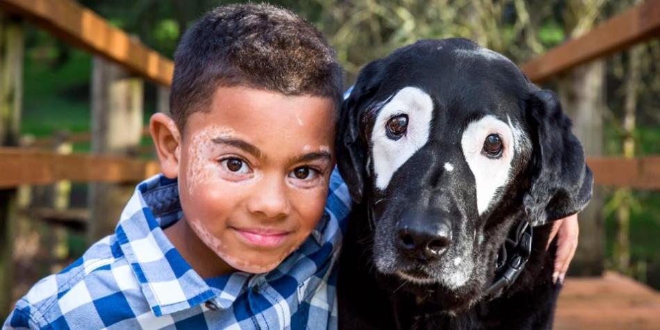 Niño sale de depresión gracias a un perro con su misma enfermedad