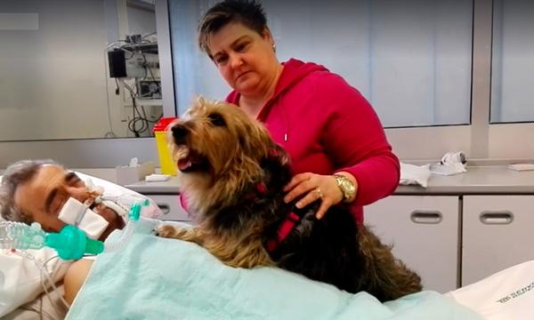 Visita de su perrita al hospital logró revivir la esperanza.