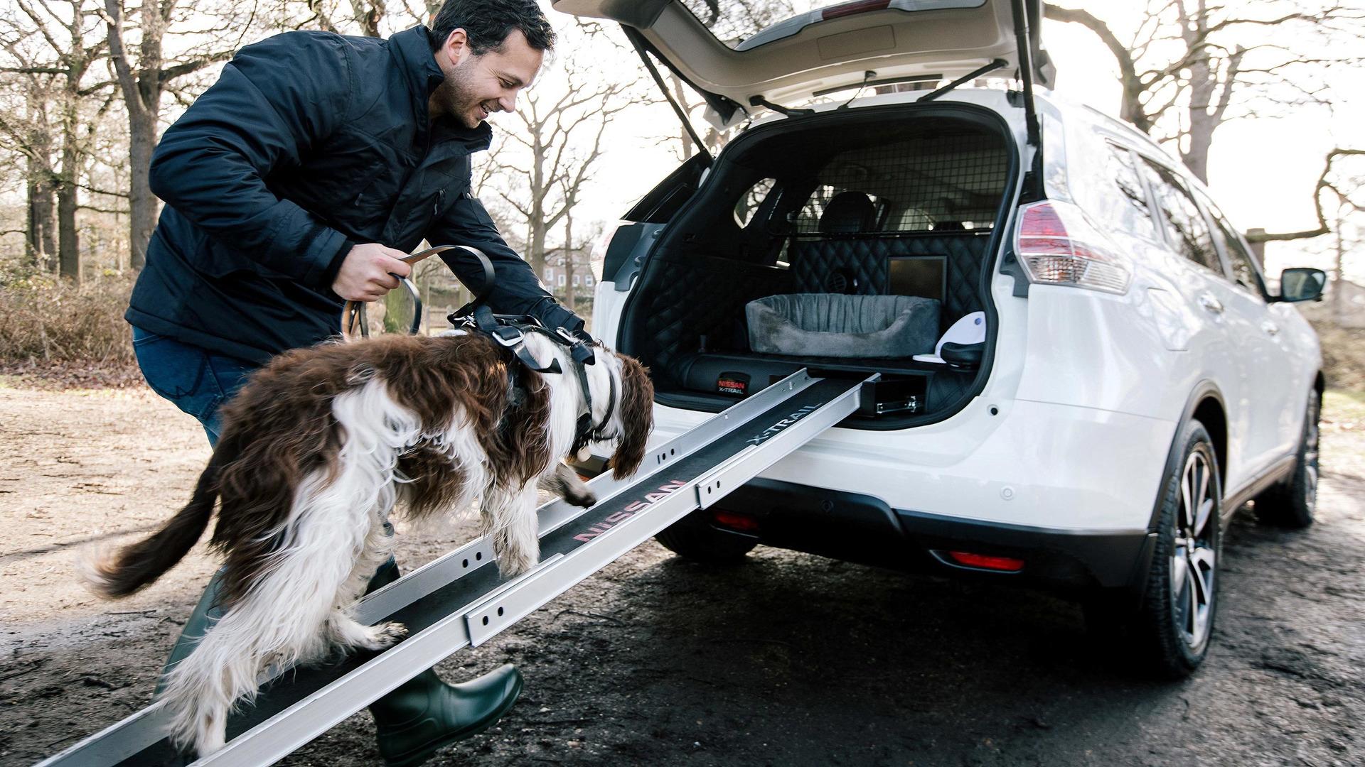 Nissan presenta prototipo de X-Trail pensado para perros (VIDEO)