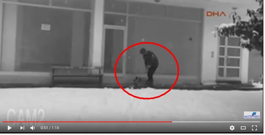(Video): Un Hombre regala  chamarra a perro callejero para protegerlo