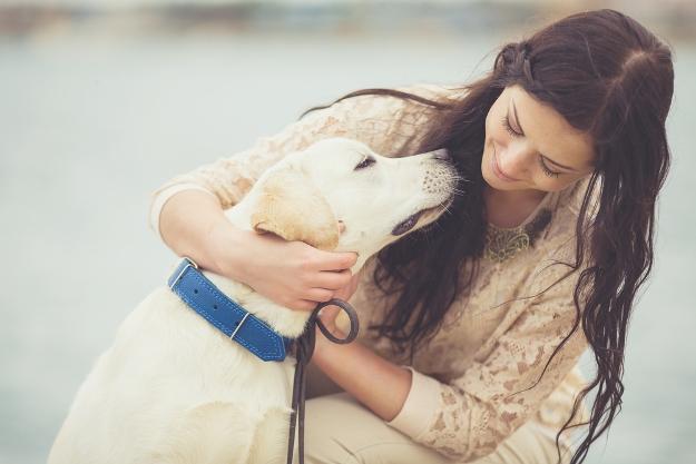 Las mujeres entienden mejor a los perros que a los hombres