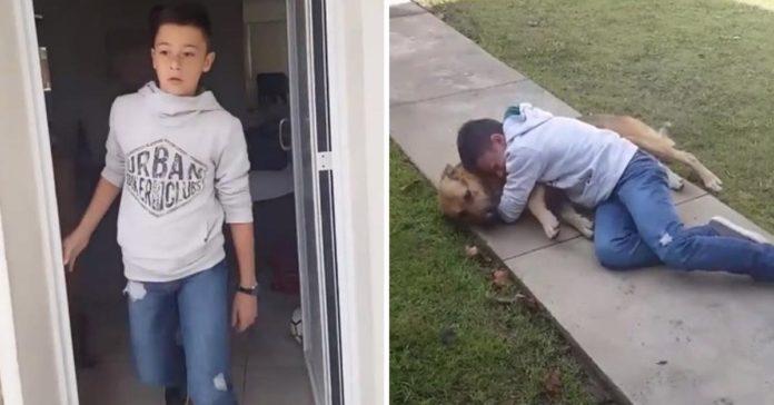 Joven rompe en llanto al reunirse de nuevo con su perrito extraviado