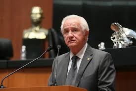 Senador Mexicano: No somos ni Suecia ni Dinamarca dejen de defender animales