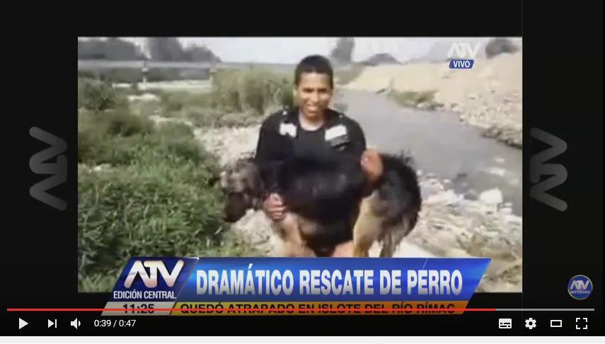 Arriesgan su vida para salvar a perro de río (VIDEO)