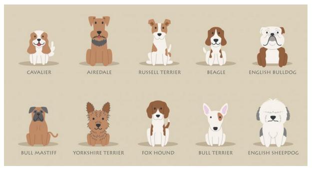 Perros británicos, en peligro de extinción