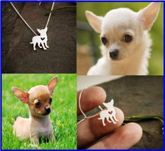 Dije Figura Raza Chihuahua .