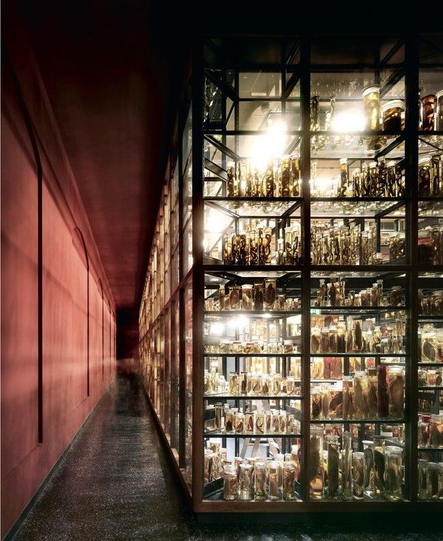 Arquitectura Viva 147 LO COMúN. DE LA AUSTERIDAD A LA SOLIDARIDAD - Preview 6