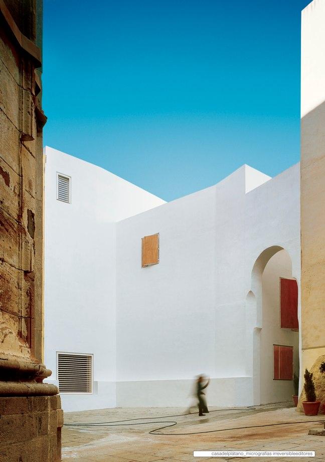 Housing in El Populo. Casa del Plátano – Book / Plane Tree House, MGM Morales de Giles - Preview 6