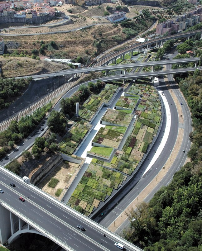 paisea 025 GREEN ROOF – LA CUBIERTA VEGETAL - Preview 7