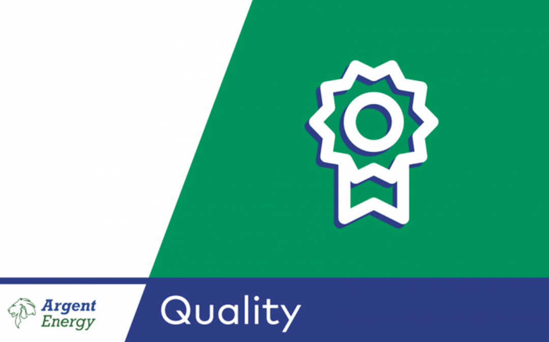 Quality-image.png#asset:623