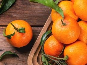 Goose Creek Candles - Clementine & Mango