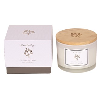 Woodbridge Lime Over Mango Large Soy Candle