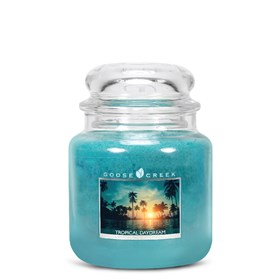 Tropical Daydream 16oz Scented Candle Jar