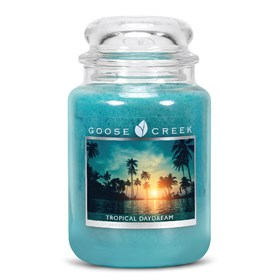 Tropical Daydream 24oz Scented Candle Jar