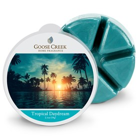Tropical Daydream Scented Wax Melts