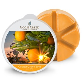 Orange Grove Tree Goose Creek Scented Wax Melts