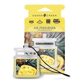 Exhilarating Pineapple Air Freshener