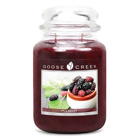 Mulberry 24oz Scented Candle Jar