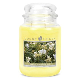 Sweet Honeysuckle 24oz Scented Candle Jar