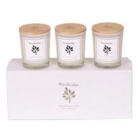 Orchid & Bamboo Set of 3 Soy Candles