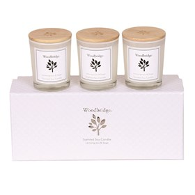 Lemon Grass & Sage Set of 3 Soy Candles