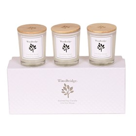Lime Over Mango Set of 3 Soy Candles