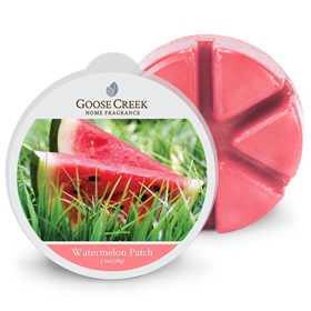 Watermelon Patch Scented Wax Melts