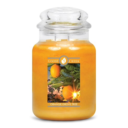 Orange Grove Tree Goose Creek Scented Candle Jar
