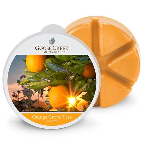 Orange Grove Tree Goose Creek Scented Wax Melts