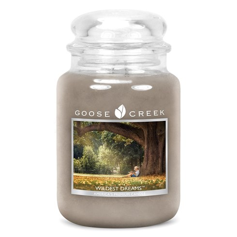 Wildest Dreams 24oz Scented Candle Jar