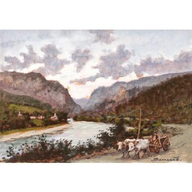 Car cu boi pe Valea Oltului