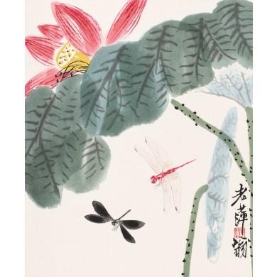 Libelule şi flori de lotus