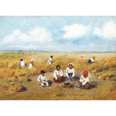 Odihnă la câmp