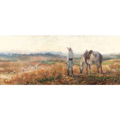 Munca câmpului