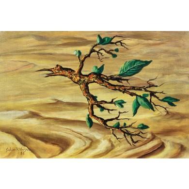 Speranţă în deșert