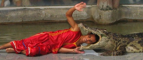 love life - stick your head in a crocodile's mouth!