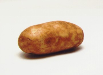 Its hard to be humble when you are a potato!