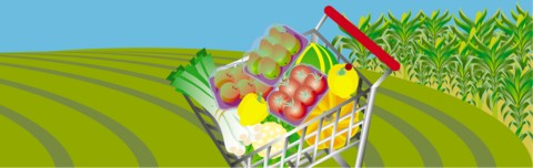 Life is like a shopping trolley, full of abundance - if you allow it