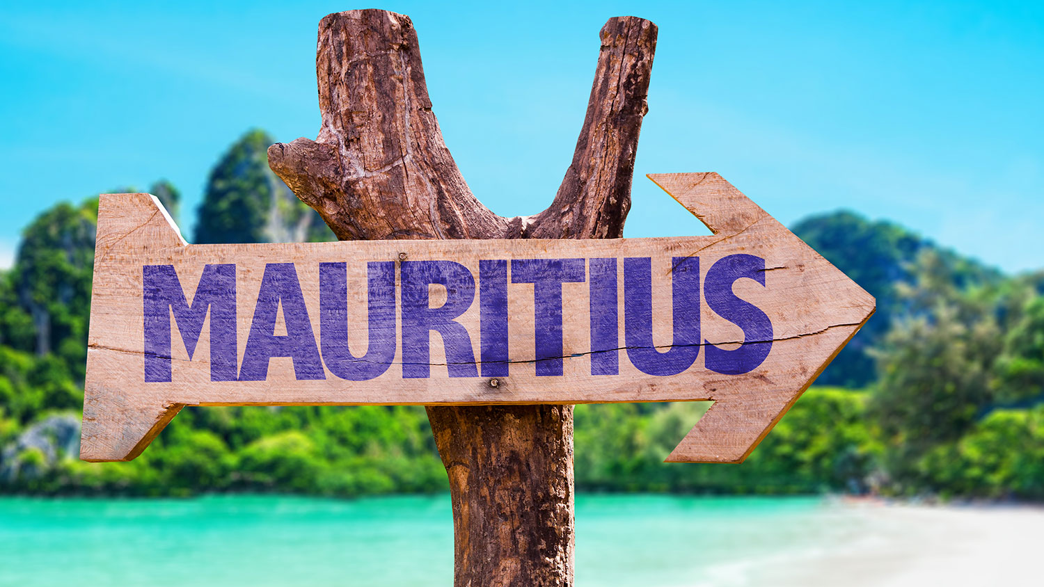 BUYERS FLOCK TO MAURITIUS DURING THE PANDEMIC