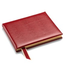 Lizard Print Guest Book in Red Lizard. Guest & Visitors Books from Aspinal of London