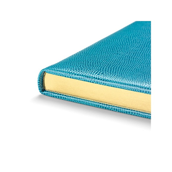 Lizard Print Large Address Book in Turquoise Lizard from Aspinal of London