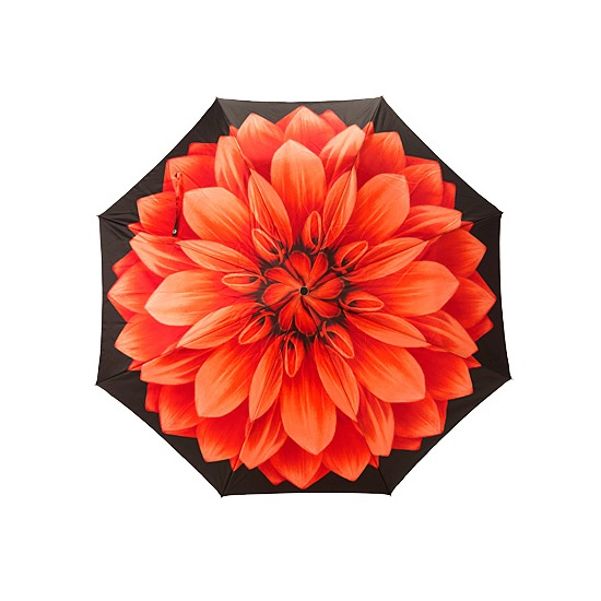 Ladies Compact Umbrella with Red Flower from Aspinal of London