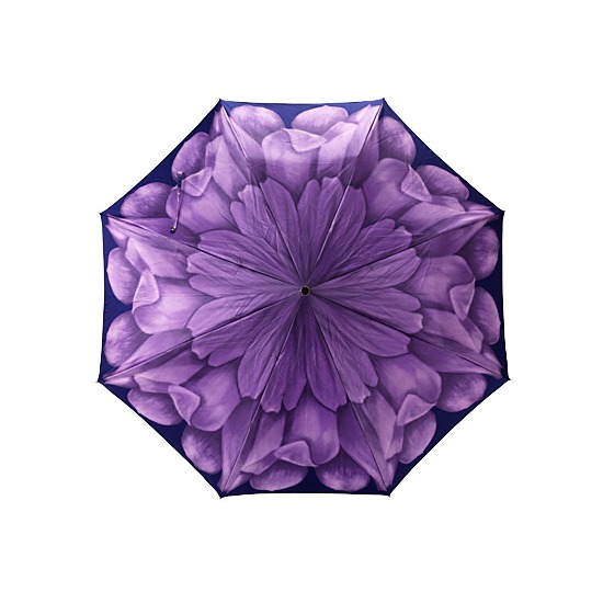 Ladies Compact Umbrella with Violet Flower from Aspinal of London