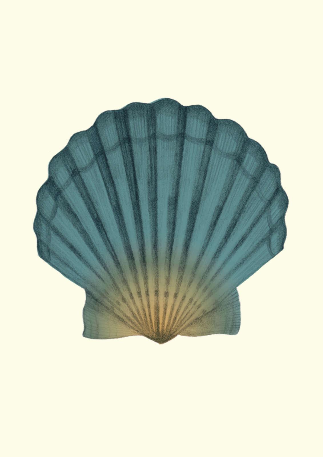 Essy  May  Personal  Shells2 Web