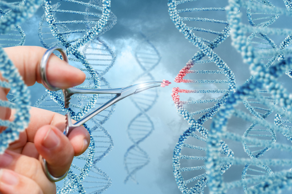 A New Dawn: Building A Future For Life Sciences After Brexit