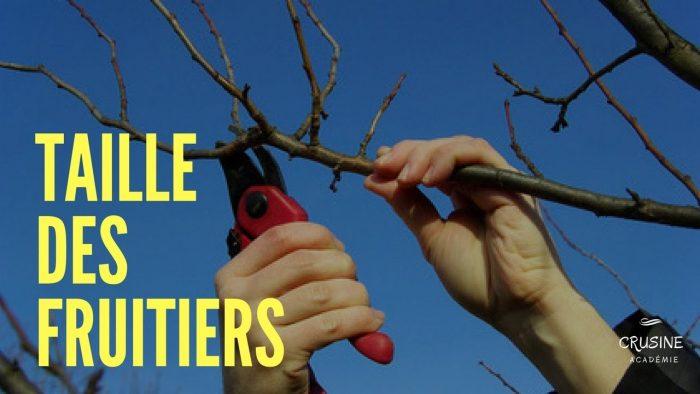 Taille-des-fruitiers au printemps