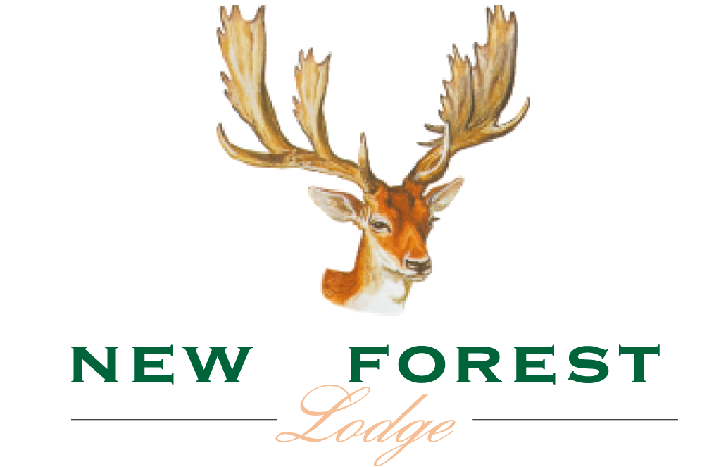 New Forest Lodge Colour Stag