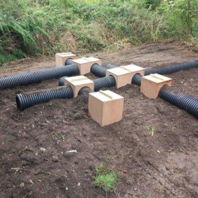 Artificial Badger Sett Installation Badger Mitigation