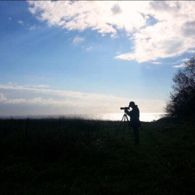 Bird Survey Ecology Consultant Uk