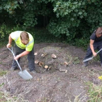 Burying Reptile Hibernaclum Log Pile Mitigation Ecology